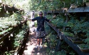 Alves w otoczeniu przyrody