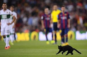 Czarny kot na rozpoczęcie meczu Barça – Elche